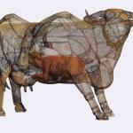 Soberanía argentina. 2012. Hierro desplegado y tela metálica. 220 x 170 x 170 cm.