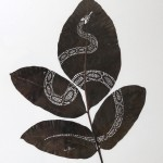 SERPIENTE II (30x25 cm. Species Juglans Regia)