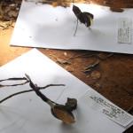 """Imagem produzida durante o evento """"Encontros com potências frágeis"""", organizado pelo grupo multiTÃO, realizado em dezembro de 2015, em Campinas."""