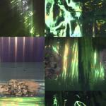 imagem 5 - mar floresta