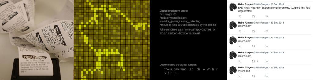 05-composite-fungal-tweet