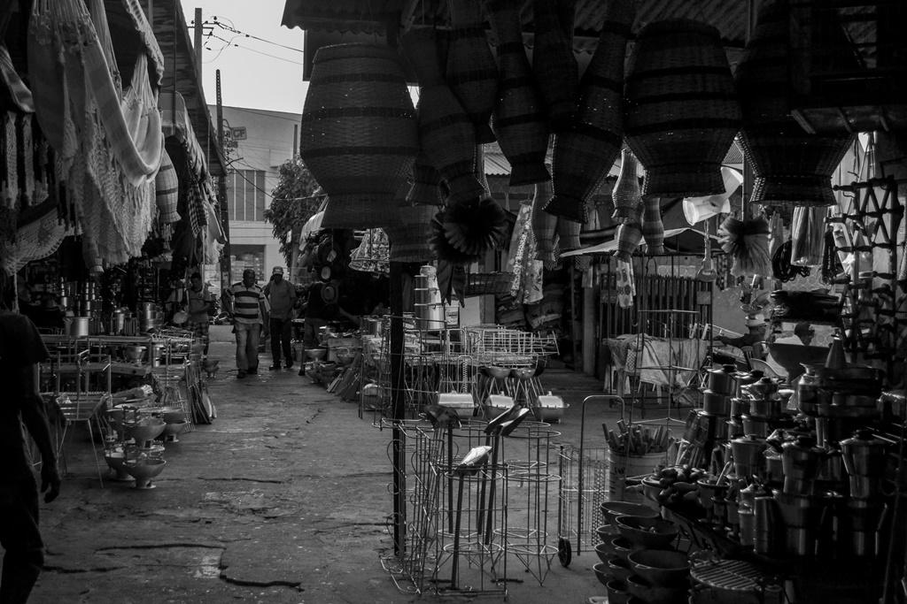 Ensaio_Mercado_Central_MA (12)