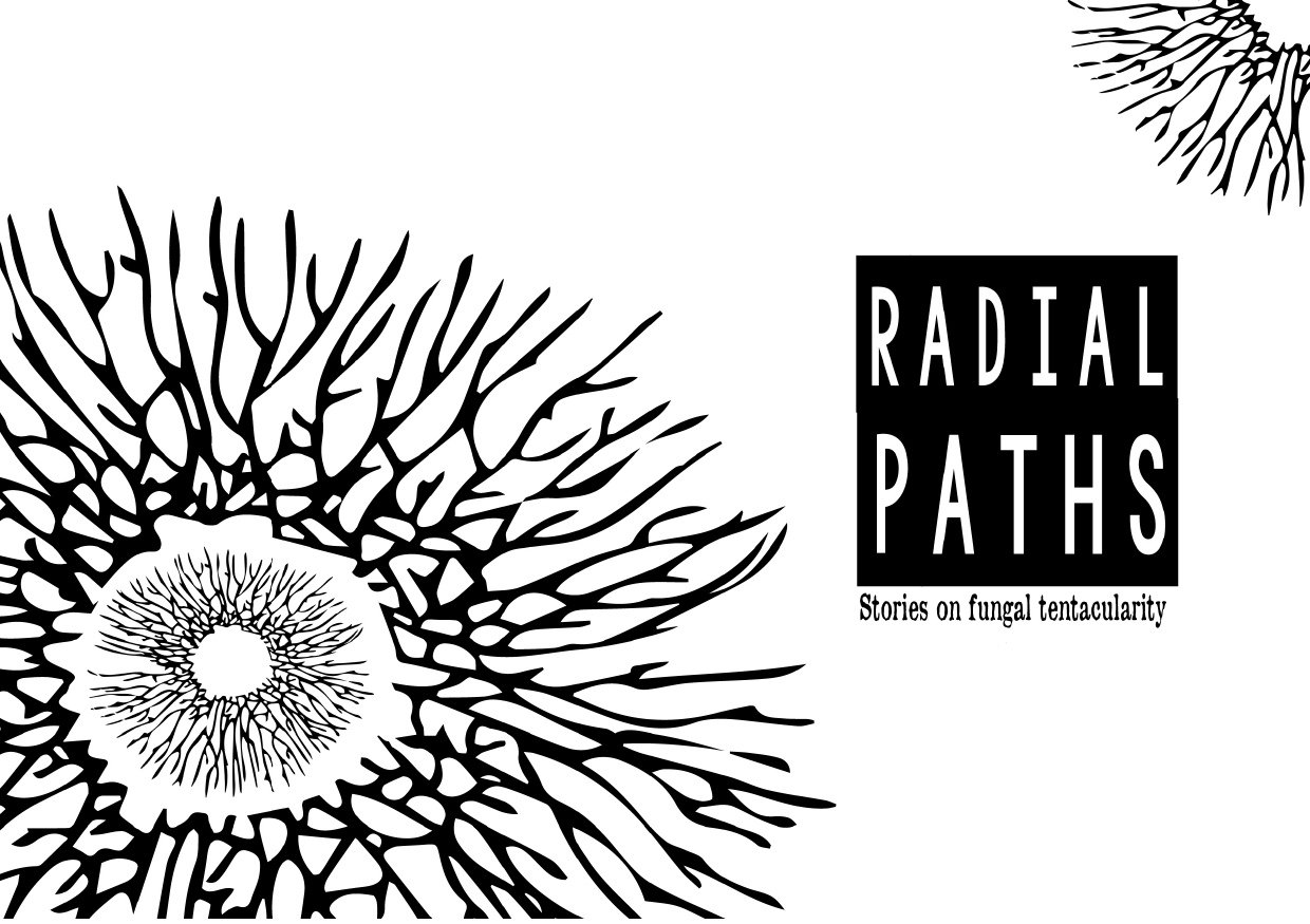 RADIAL PATHS 06-08_page-0001