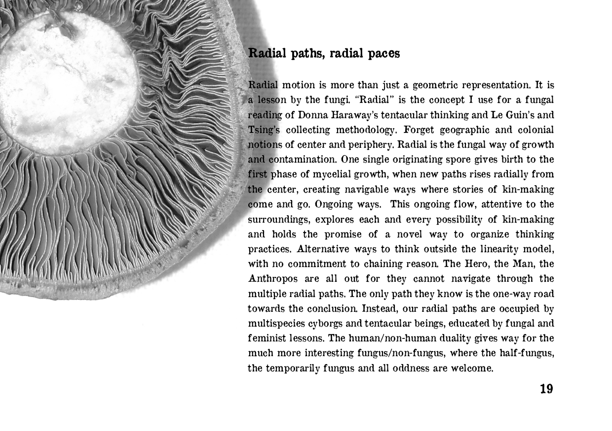 RADIAL PATHS 06-08_page-0019