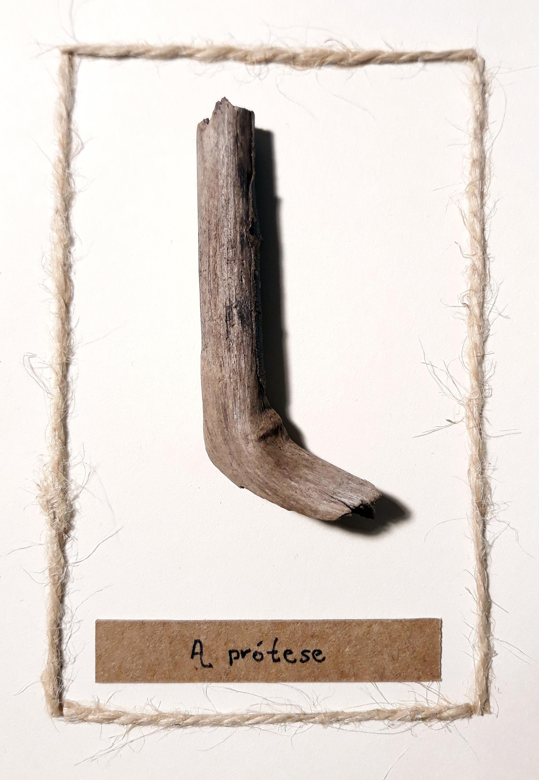 A protese